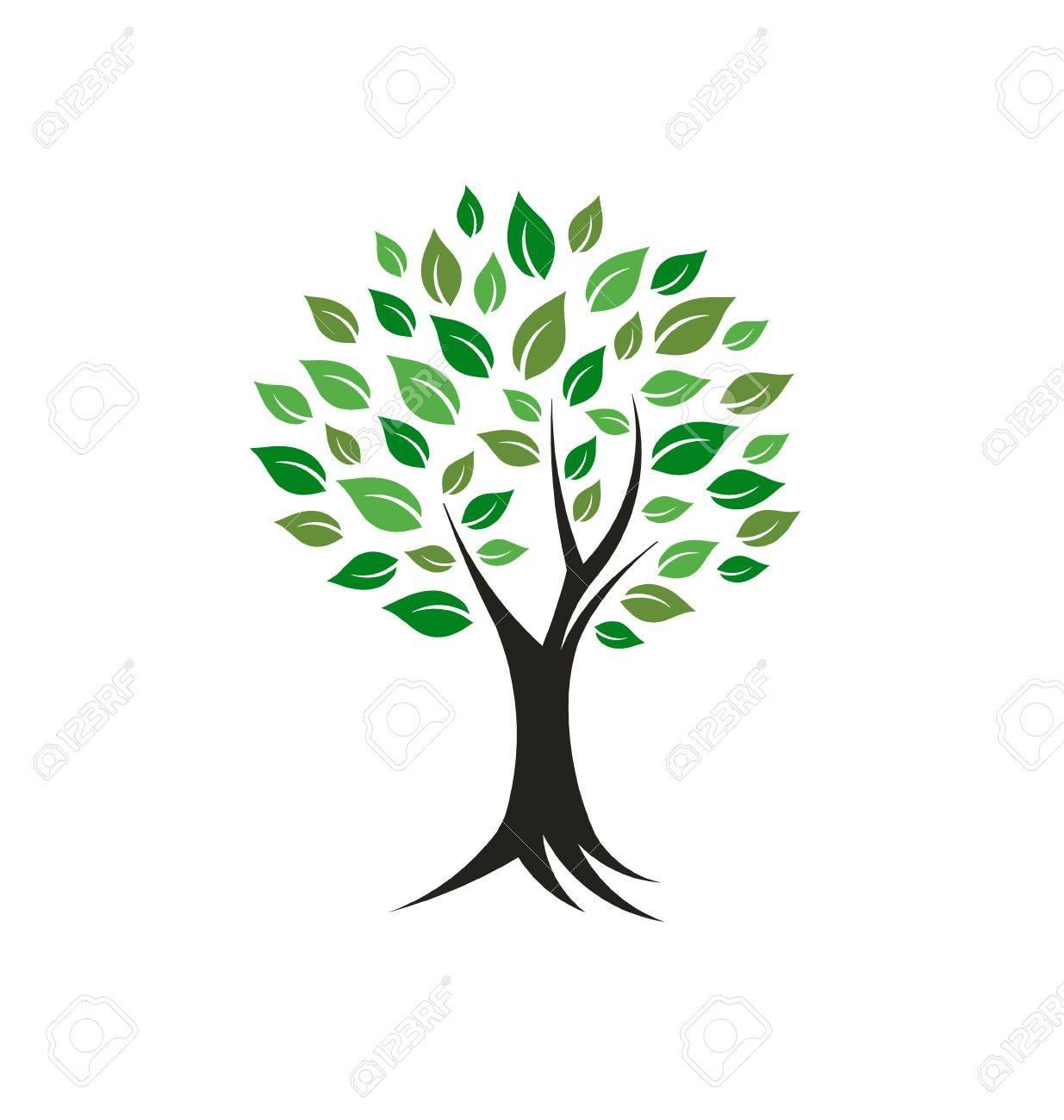 tree plant image concept