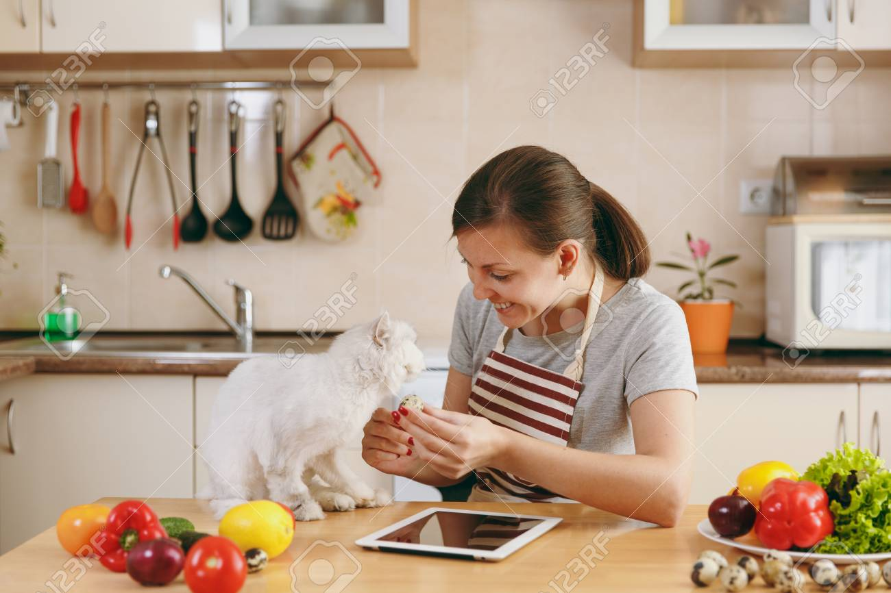 cats in the kitchen step stool chair young pretty woman with white persian cat stock photo tablet on table vegetable salad dieting concept healthy lifestyle