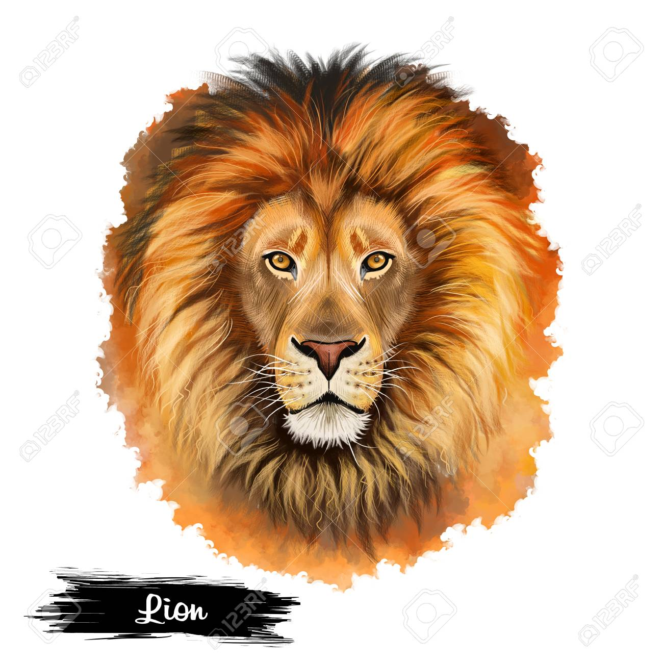 Lion Head Isolated On White Background Digital Art Illustration Stock Photo Picture And Royalty Free Image Image 85898827