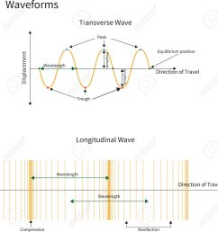 diagram showing transverse and longitudinal wave forms stock vector 17736520 [ 1259 x 1300 Pixel ]