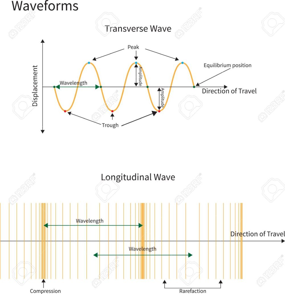 medium resolution of diagram showing transverse and longitudinal wave forms stock vector 17736520