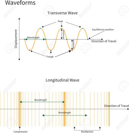 small resolution of diagram showing transverse and longitudinal wave forms stock vector 17736520