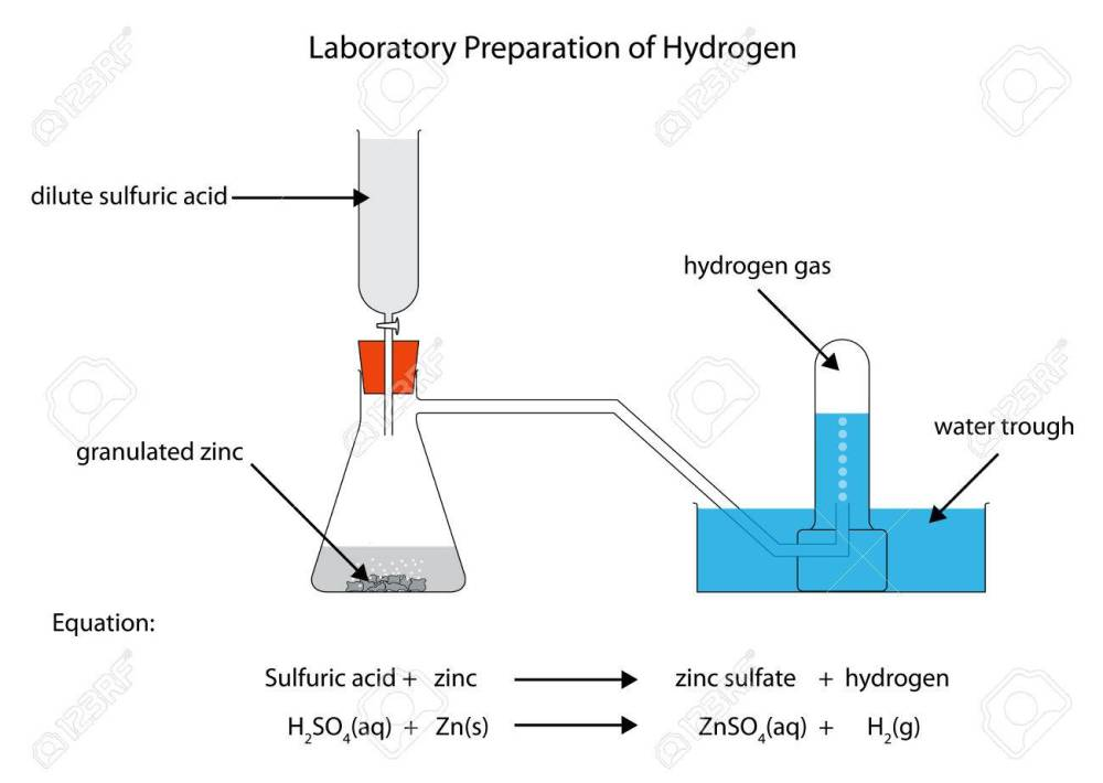 medium resolution of labelled diagram for laboratory preparation of hydrogen from zinc and sulfuric acid stock vector 51446929