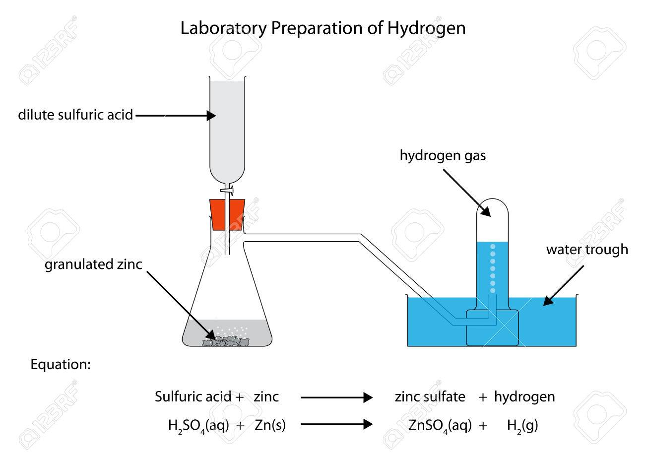 hight resolution of labelled diagram for laboratory preparation of hydrogen from zinc and sulfuric acid stock vector 51446929