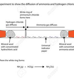 labelled diagram to show the diffusion of ammonia and hydrogen chloride stock vector 66837635 [ 1300 x 909 Pixel ]