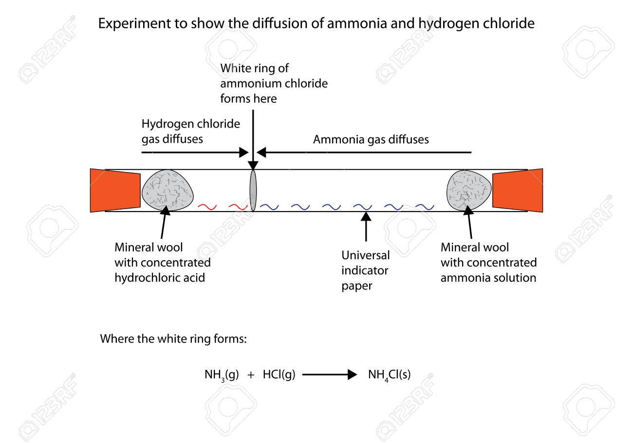 hight resolution of labelled diagram to show the diffusion of ammonia and hydrogen chloride stock vector 66837635