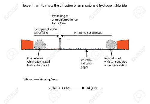 small resolution of labelled diagram to show the diffusion of ammonia and hydrogen chloride stock vector 66837635