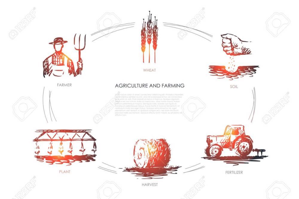 medium resolution of agriculture and farming farmer soil wheat plant harvest fertilizer vector