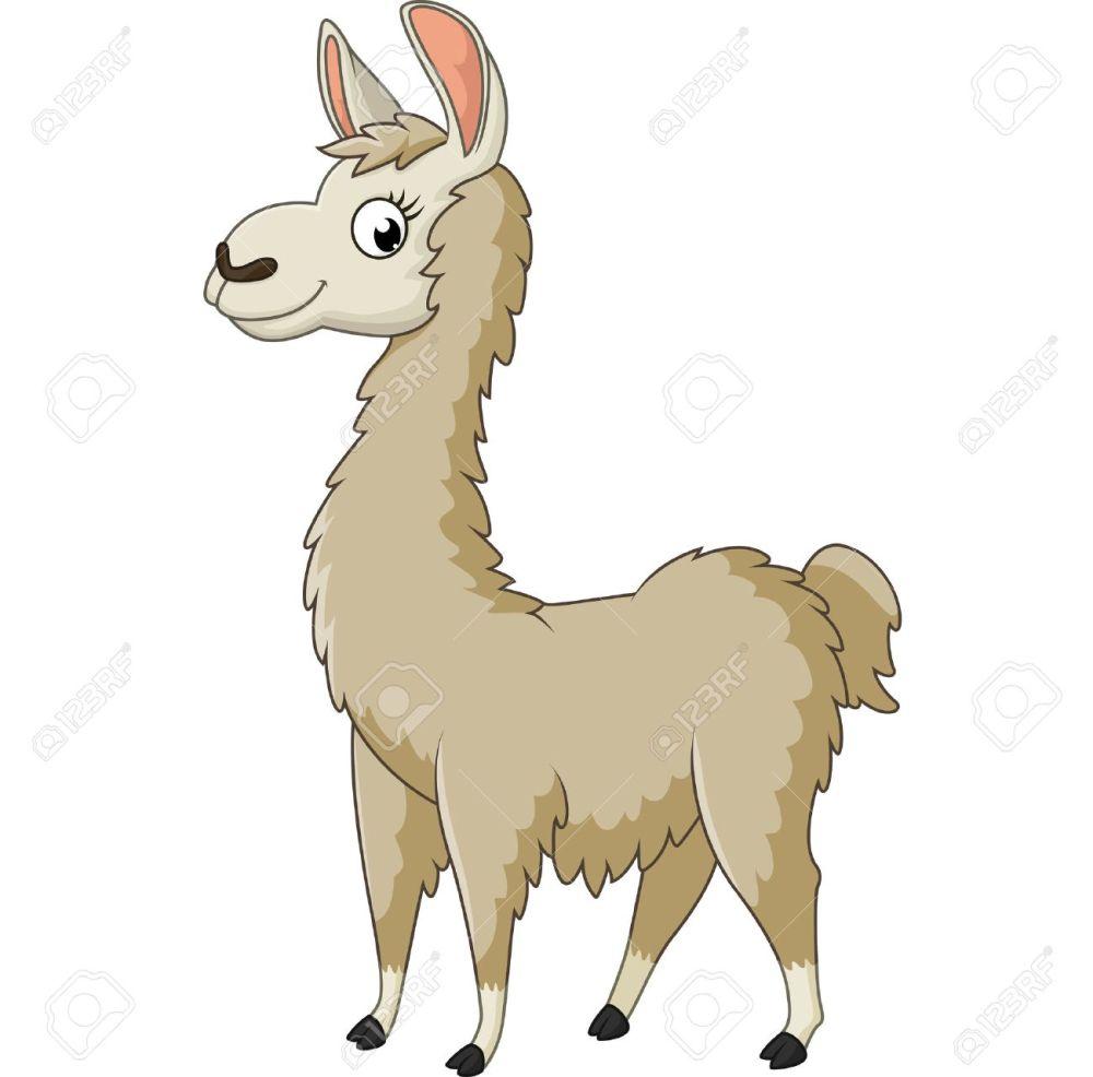 medium resolution of llama cartoon stock vector 56878211