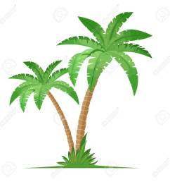 tropical palm trees isolated on white background coconut trees vector illustration in flat style [ 1300 x 1300 Pixel ]