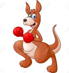 cute kangaroo with boxing gloves stock vector 46818952 [ 1300 x 1198 Pixel ]