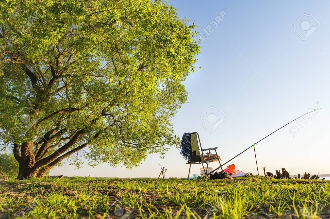 green fishing chair comfy nursing rod and under large tree on beautiful shore of lake or river