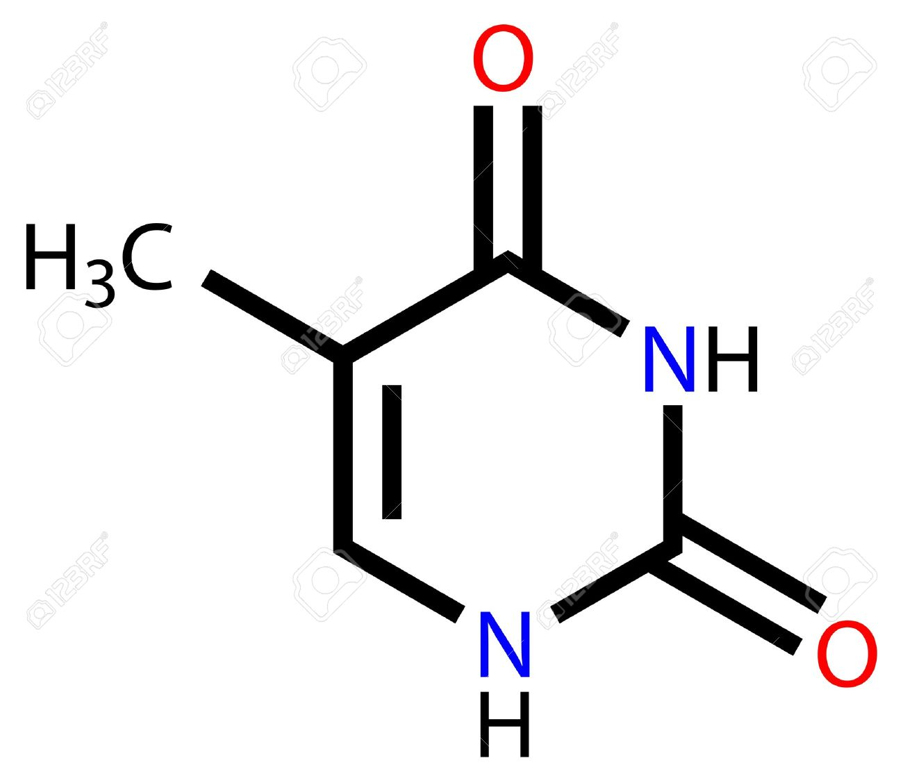 hight resolution of nucleobase thymine structural formula stock vector 13411807