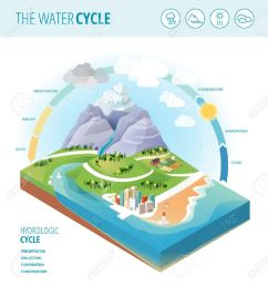 the water cycle diagram showing precipitation collection evaporation and condensation of water on a [ 1233 x 1300 Pixel ]
