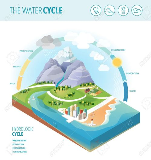 small resolution of the water cycle diagram showing precipitation collection evaporation and condensation of water on a