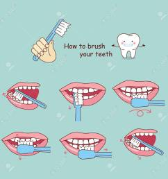 how to brush your teeth great for your design stock vector 70274969 [ 1300 x 1299 Pixel ]