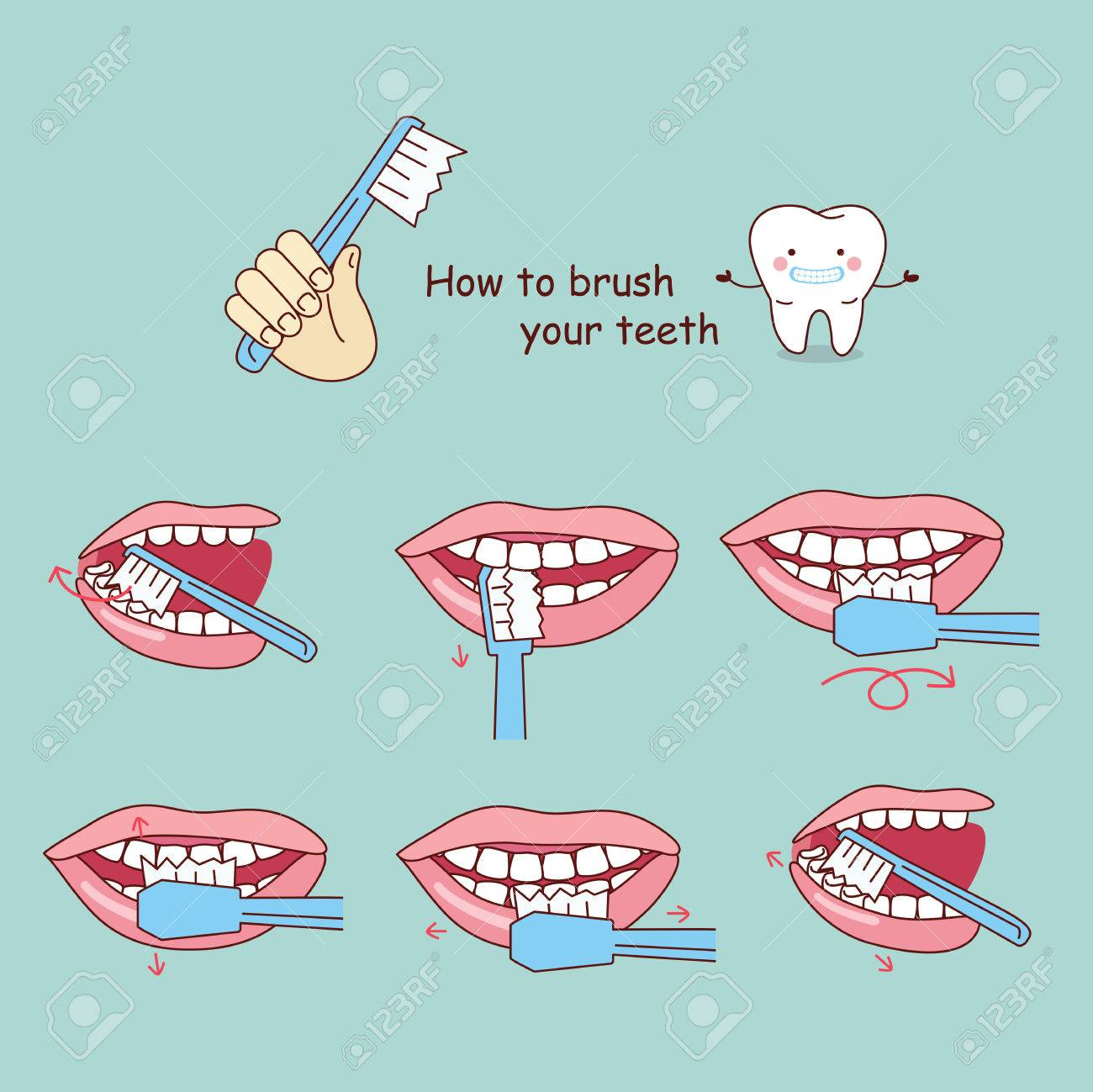 hight resolution of how to brush your teeth great for your design stock vector 70274969