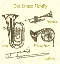 vector illustration of hand drawn brass family instruments beautiful ink drawing of tuba trumpet [ 1300 x 1300 Pixel ]