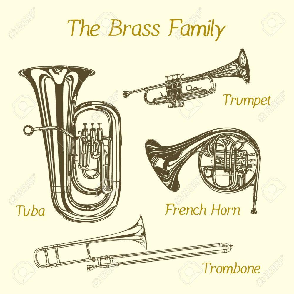 medium resolution of vector illustration of hand drawn brass family instruments beautiful ink drawing of tuba trumpet