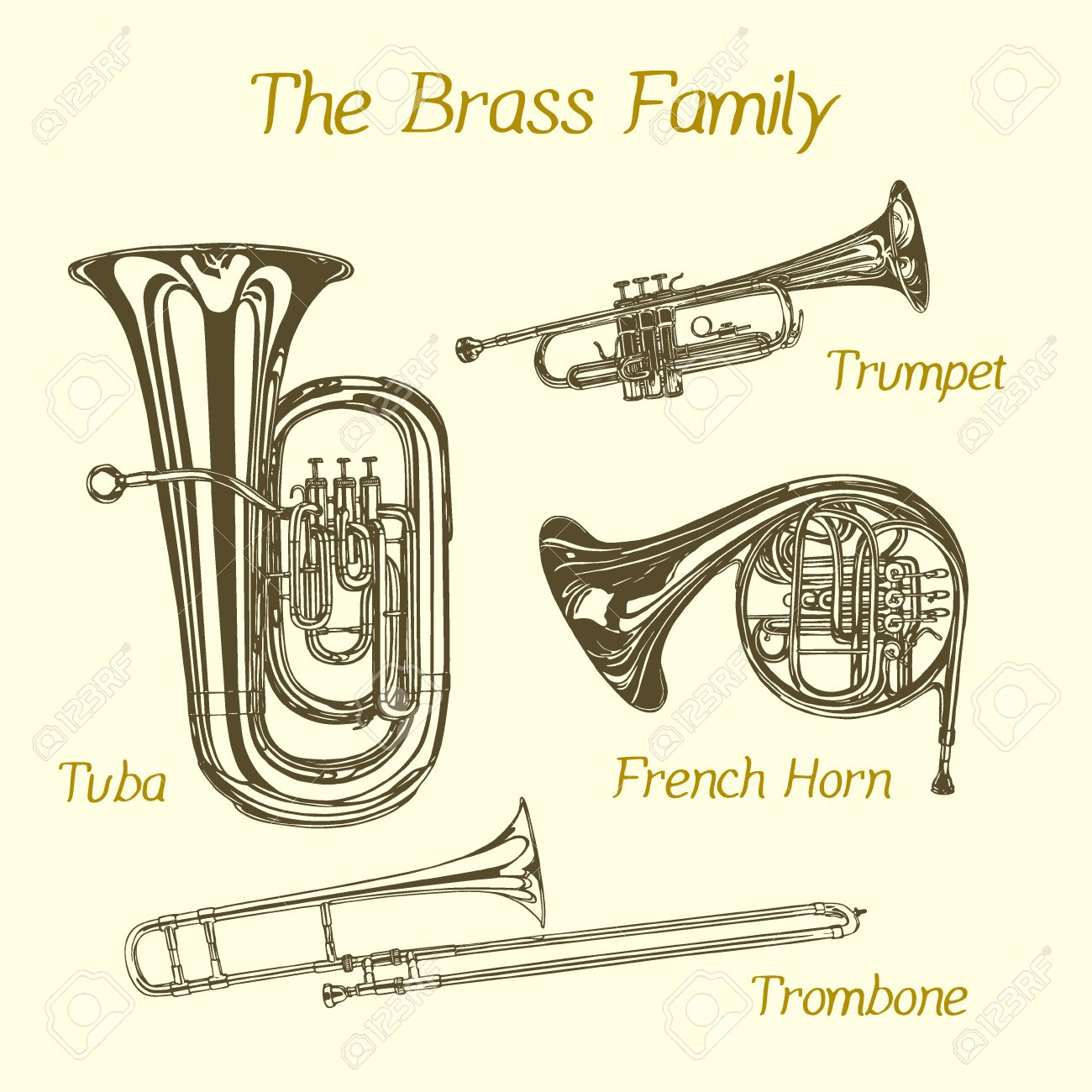 hight resolution of vector illustration of hand drawn brass family instruments beautiful ink drawing of tuba trumpet