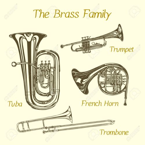 small resolution of vector illustration of hand drawn brass family instruments beautiful ink drawing of tuba trumpet