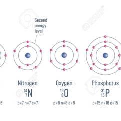 Energy Level Diagram For Nitrogen 7 Way Trailer Plug Wiring Chevy Structure Of An Atom Hydrogen Carbon Oxigen Phosphorus Illustration Sulfur Atomic Model Vector