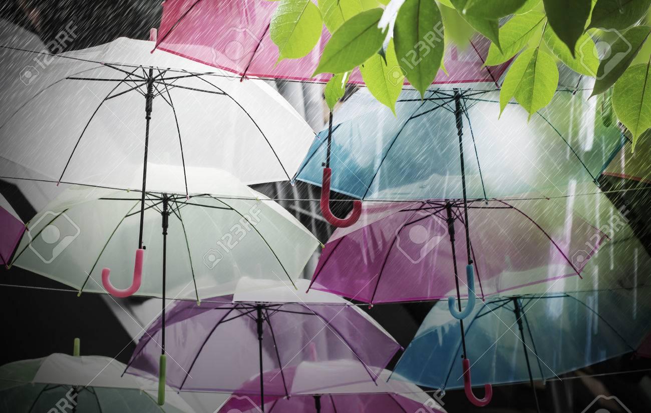 colorful umbrellas decoration in