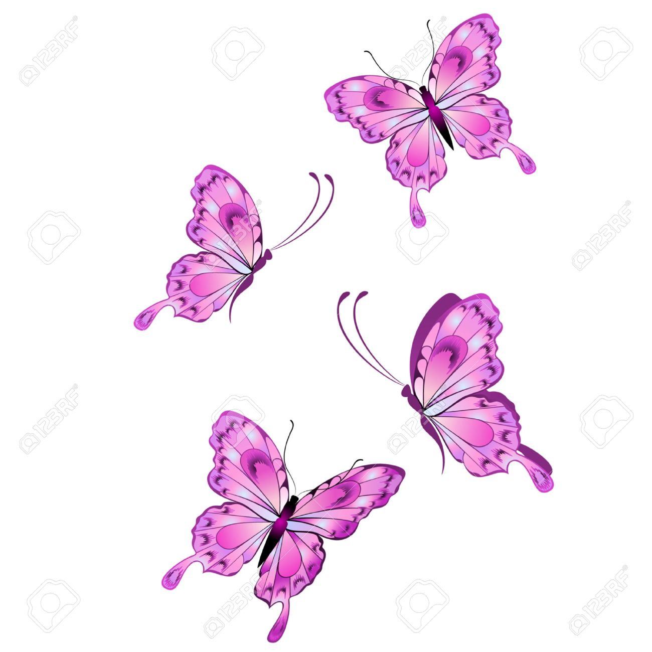 hight resolution of purple butterflies clipart more information