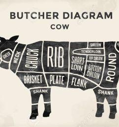 cut of beef set poster butcher diagram cow vintage typographic beef diagram butcher [ 1300 x 886 Pixel ]