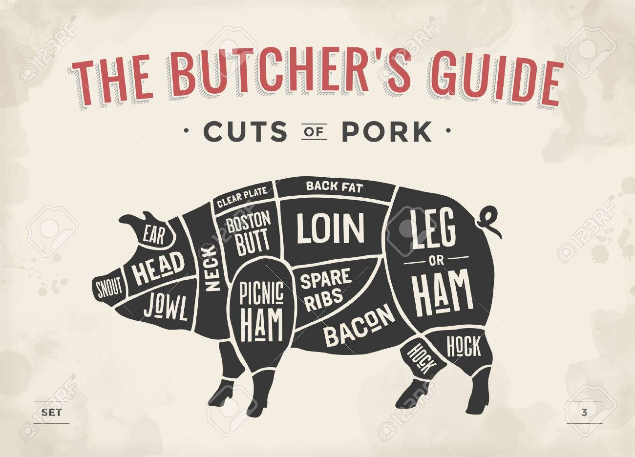 hight resolution of cut of meat set poster butcher diagram scheme and guide pork pork butcher poster cut