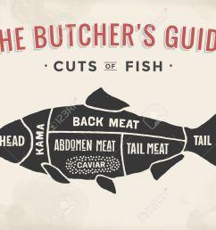 poster butcher diagram and scheme fish vintage typographic hand [ 1300 x 937 Pixel ]