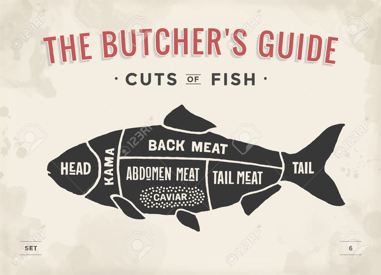 hight resolution of poster butcher diagram and scheme fish vintage typographic hand