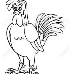 chicken clipart stock vector 24336266 [ 885 x 1300 Pixel ]