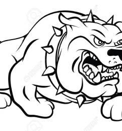 bull dog vector illustration [ 1300 x 860 Pixel ]