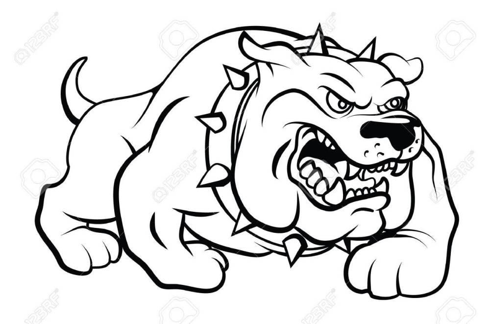 medium resolution of bull dog vector illustration