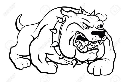 small resolution of bull dog vector illustration