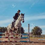 Female Jockey On Dapple Gray Horse Jumping Over Hurdle In The Stock Photo Picture And Royalty Free Image Image 107246636