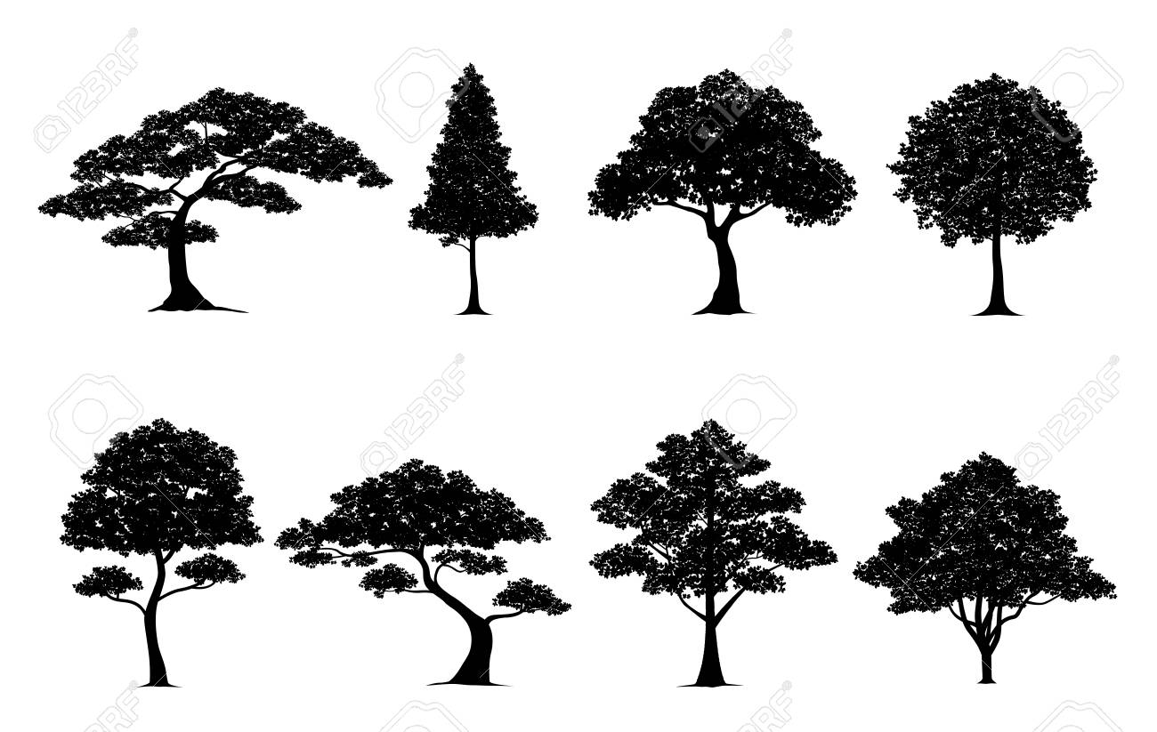 silhouette tree vector trees