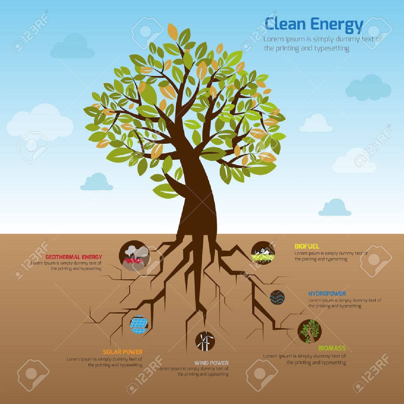 hight resolution of illustration tree and it u0027s wide spread root representing cleanillustration tree and it u0027s