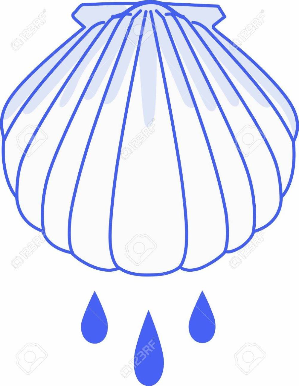 medium resolution of have this baptism shell for a very special occasion stock vector 45284403
