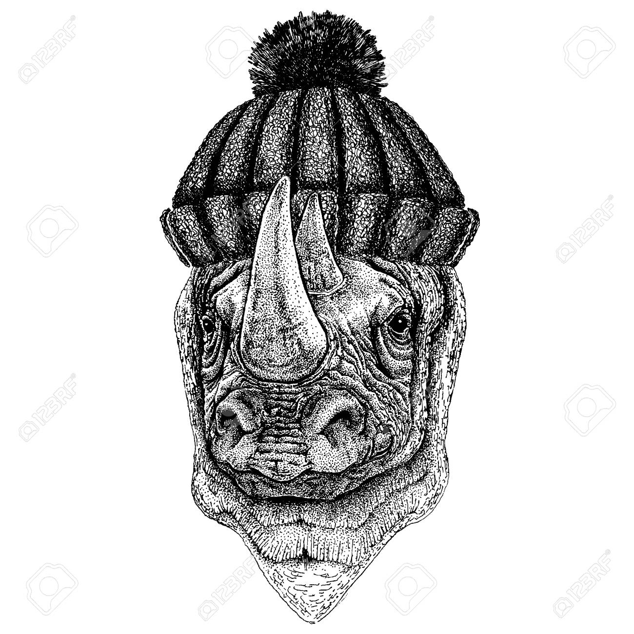 rhinoceros rhino hand drawn