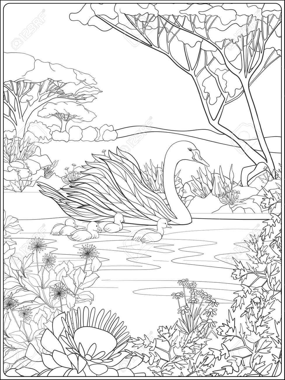 Dibujos Para Colorear Y Pintar