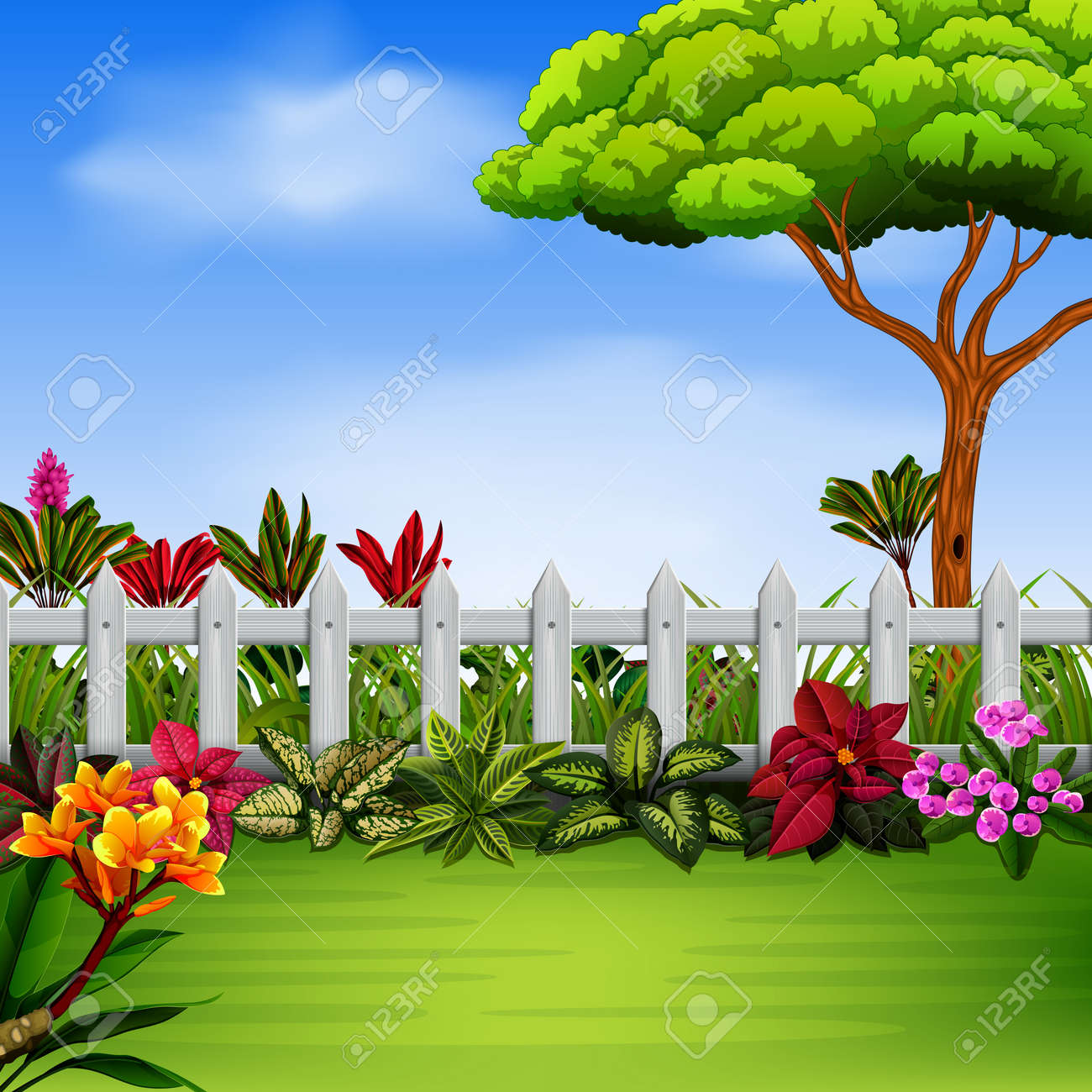 The Beautiful Garden With The Fance And Flowers Royalty Free Cliparts Vectors And Stock Illustration Image 107902926