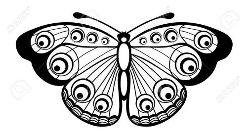 small resolution of beautiful black and white butterfly isolated on white stock vector 18276275