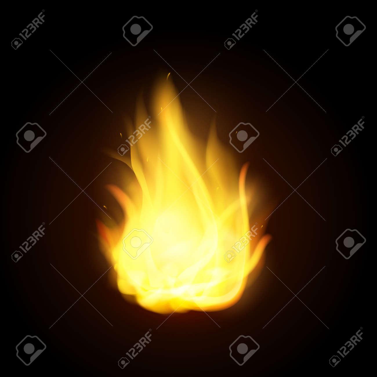 vector realistic fire flames