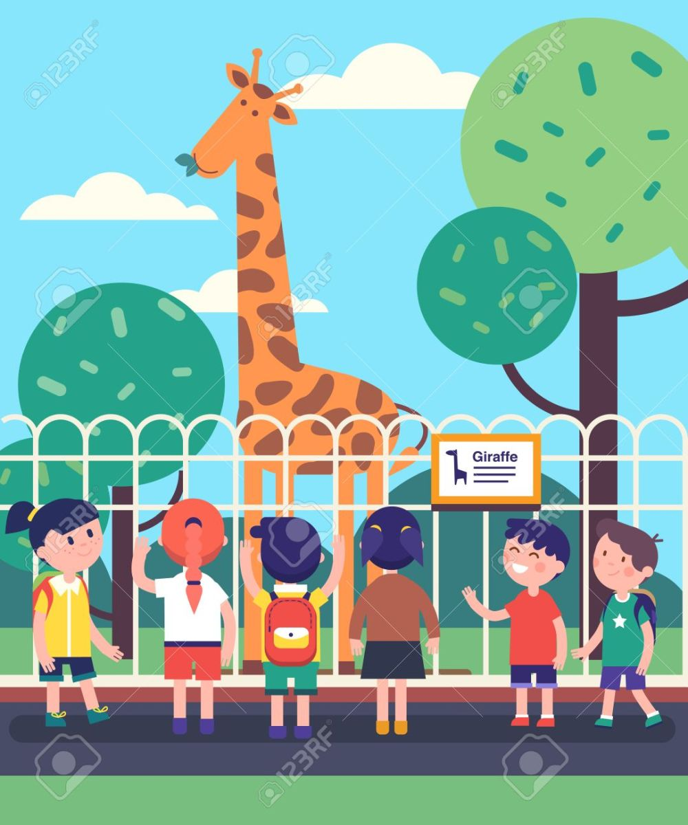 medium resolution of group of kids watching giraffe at a zoo excursion school or kindergarten students on filed