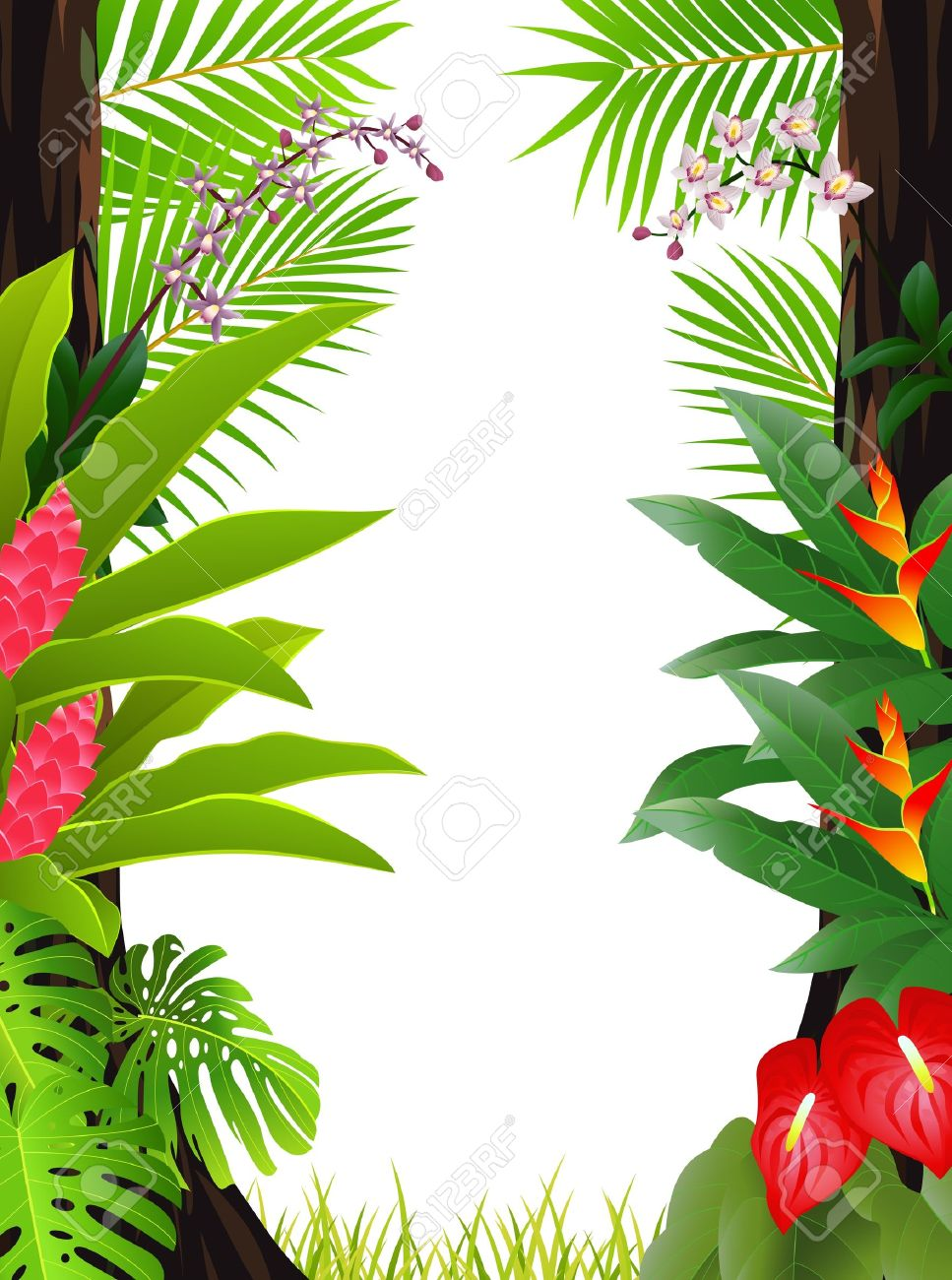Tropical rainforests represent the oldest major vegetation type still present on the terrestrial earth. Tropical Forest Background Royalty Free Cliparts Vectors And Stock Illustration Image 13497111