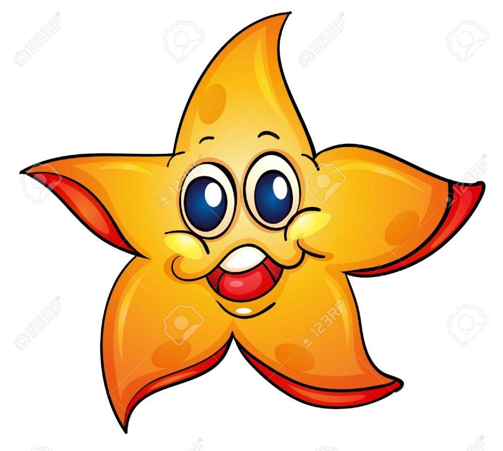 medium resolution of illustration of a sea star illustration