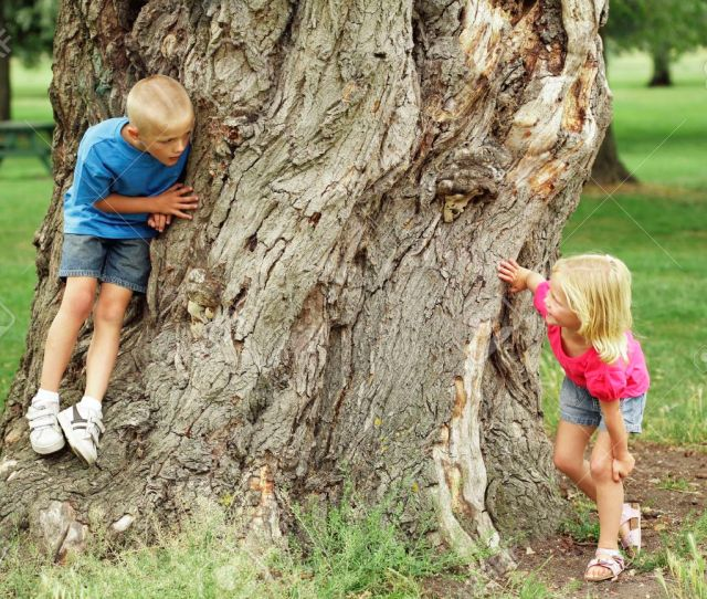 Children Playing Hide And Seek Stock Photo 26204323