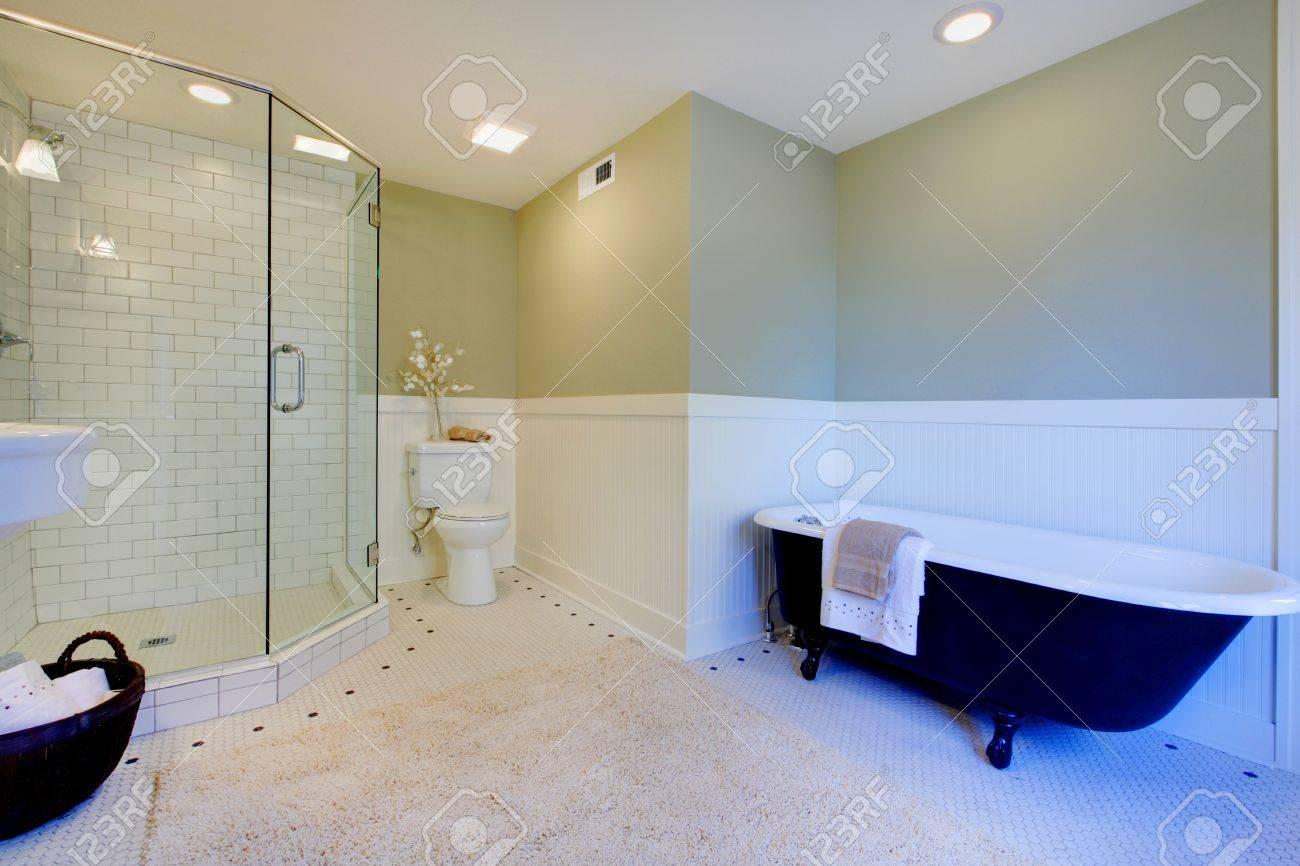salle de bains de luxe avec baignoire fer et douche a l italienne